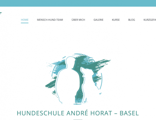Webtexte für Hundeschule in Basel